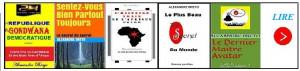 amazonafrique.blogspot.com